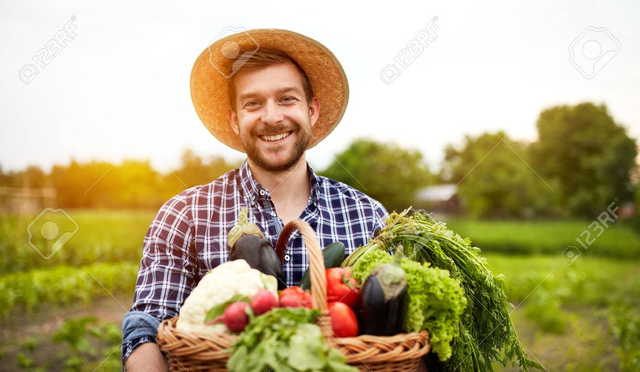 Cheerful farmer with organic vegetables in garden Banque d'images - 62462188