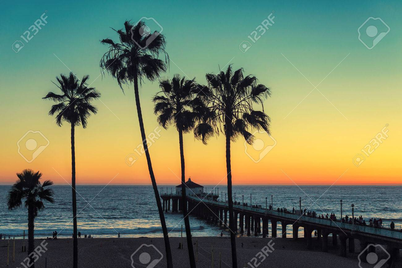 Palm Trees At California Beach Vintage Processed Fashion Travel And Tropical Concept