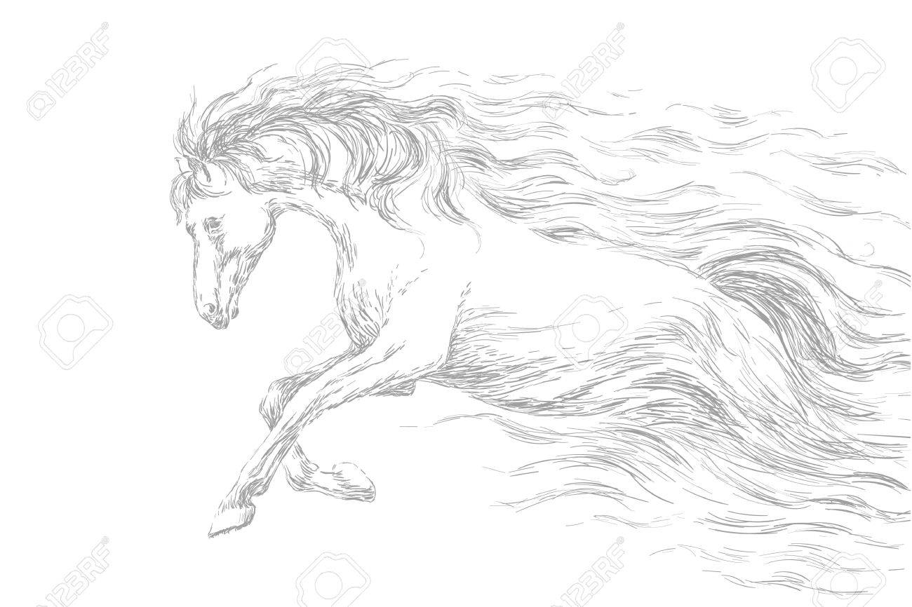 Pencil Sketches Of Horses Running Chelss Chapman