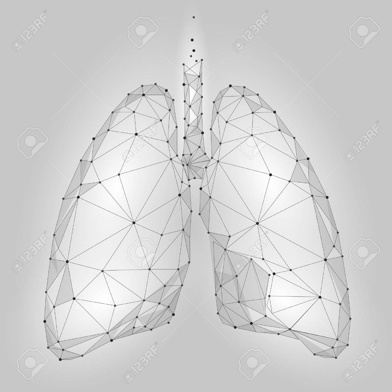 Human Internal Organ Lungs. Low Poly technology design. White Gray color polygonal triangle connected dots. Health medicine icon background vector illustration - 82816675