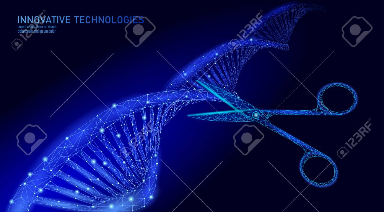 DNA 3D structure editing medicine concept. Low poly polygonal triangle gene therapy cure genetic disease. GMO engineering CRISPR Cas9 innovation modern technology science banner vector illustration - 117102951