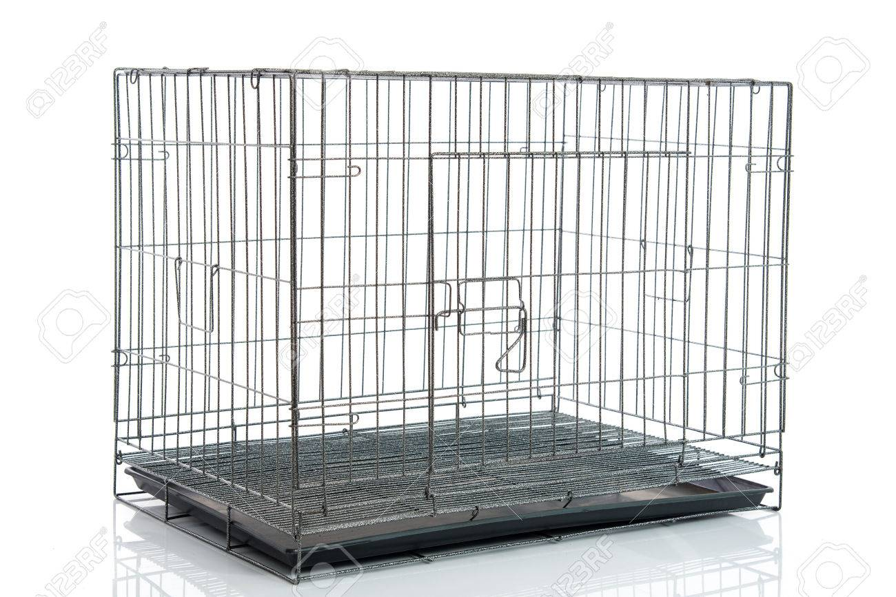Wire Dog Crate Or Animal Cage On White Background Isolated Stock ...