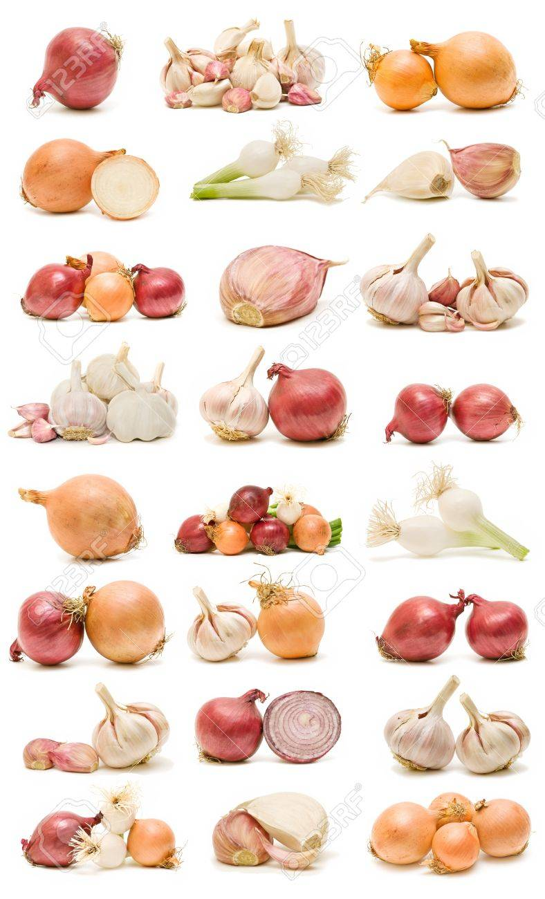 collection of garlic and onions Stock Photo - 8399586