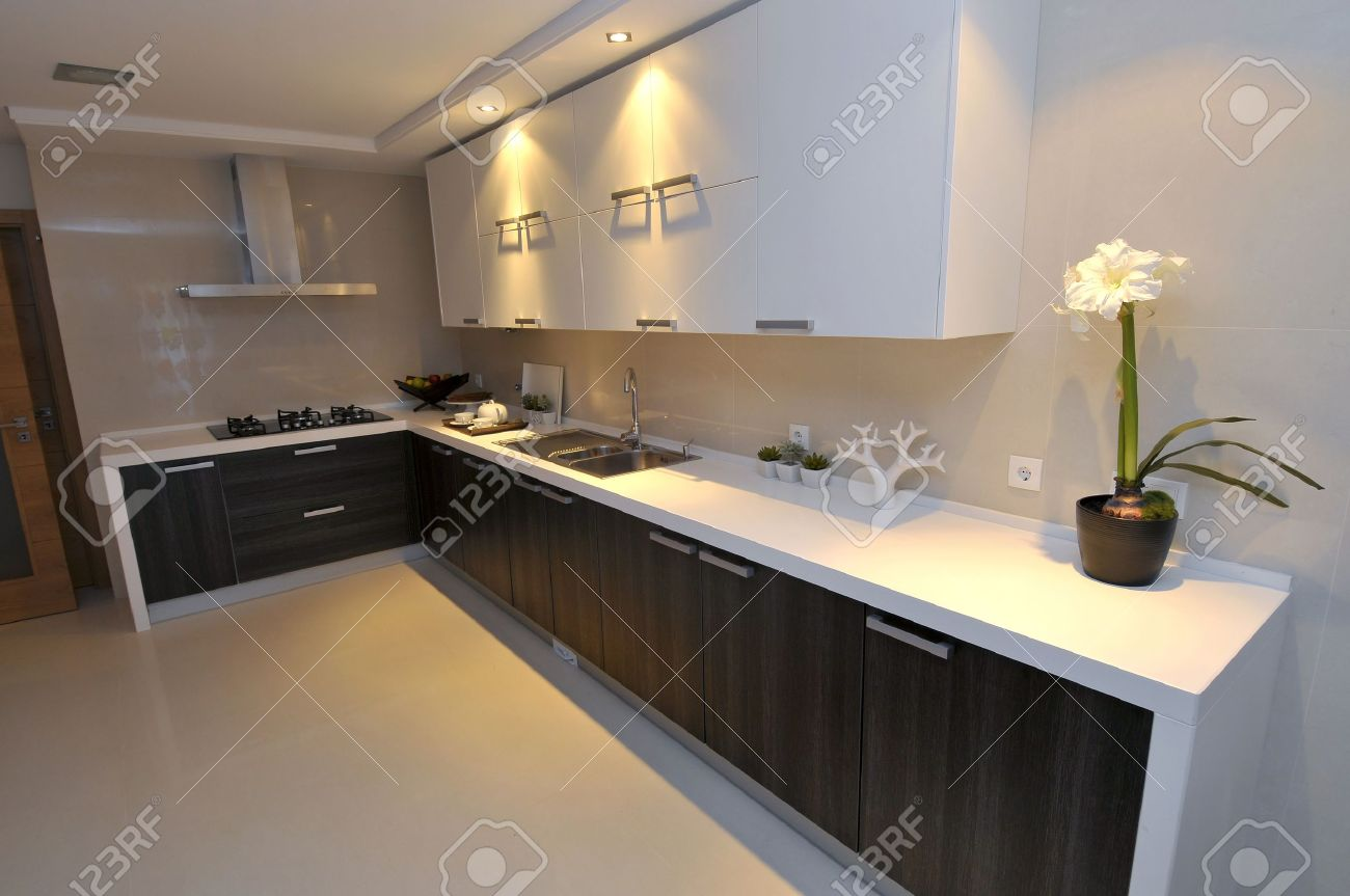Modern apartment big kitchen with beautiful decoration Stock Photo - 8565828