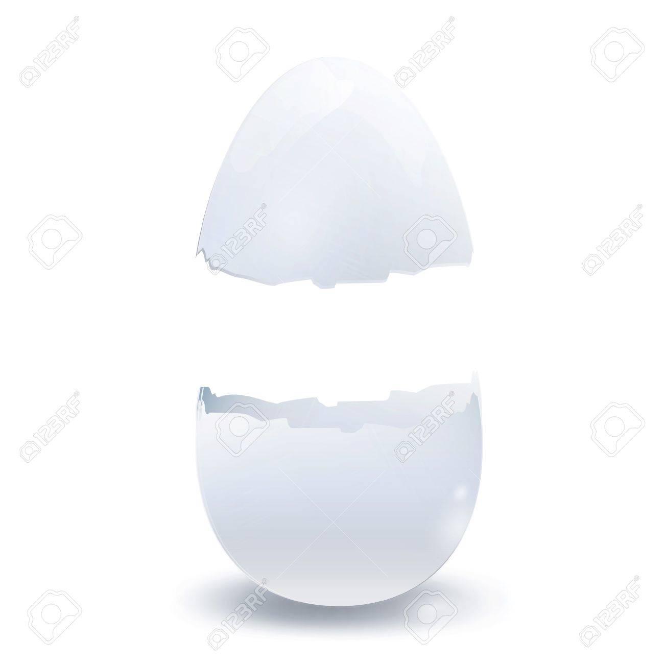 Realistic broken egg. Vector design. Stock Vector - 18974814