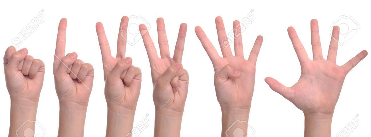 set of back woman hands counting from zero to five (isolated on white background) Stock Photo - 7529611