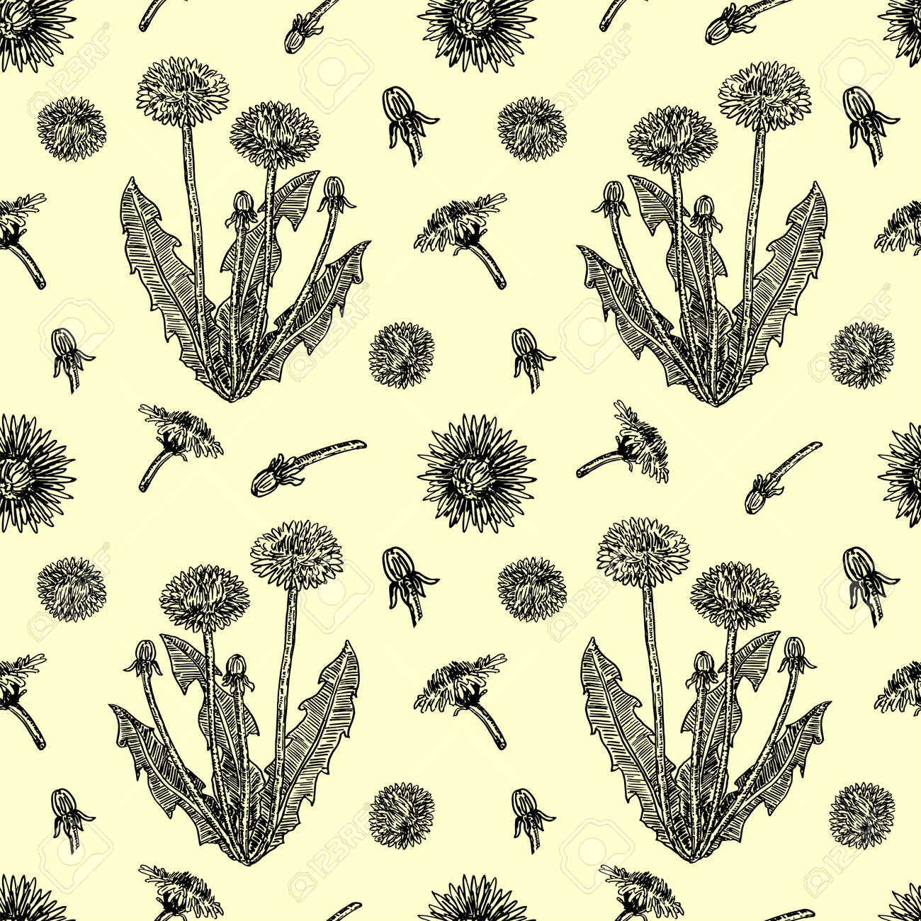 Graphic hand drawn dandelions. Cover page template with dandelions based on seamless pattern. Vector sketch seamless pattern. For wallpaper, pattern fills, web page background, surface textures - 169743685
