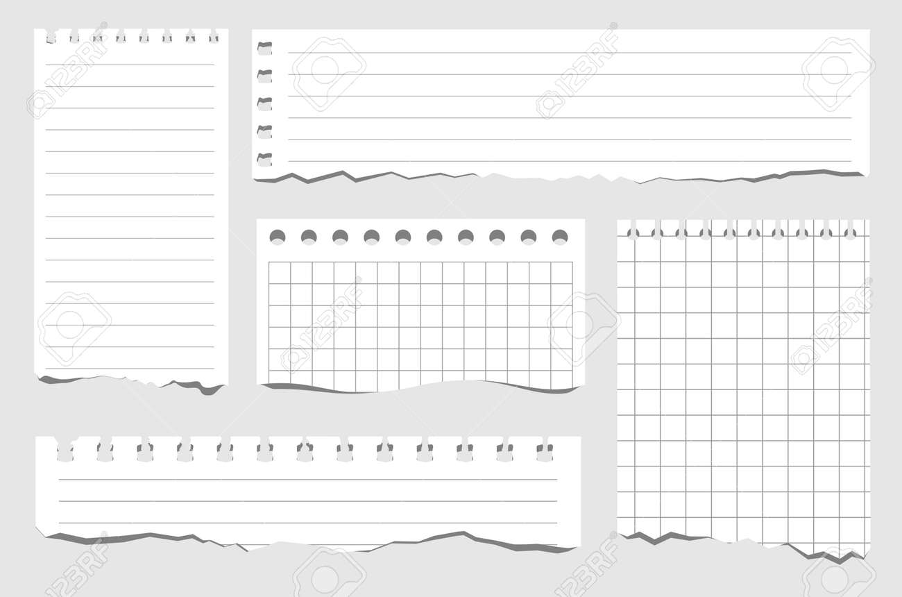 Set of pieces of paper of different types. Torn notebook papers. Blank gridded notebook ripped out papers. Vector illustration white paper sheets of square with cell horizontal line and perforation - 169743701