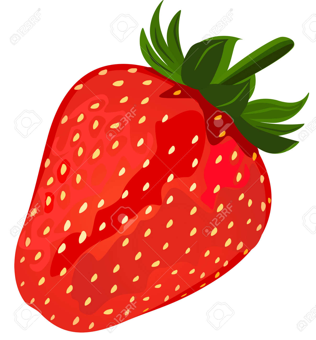 Ripe Red Strawberries Royalty Free Cliparts Vectors And Stock Illustration Image 12876978