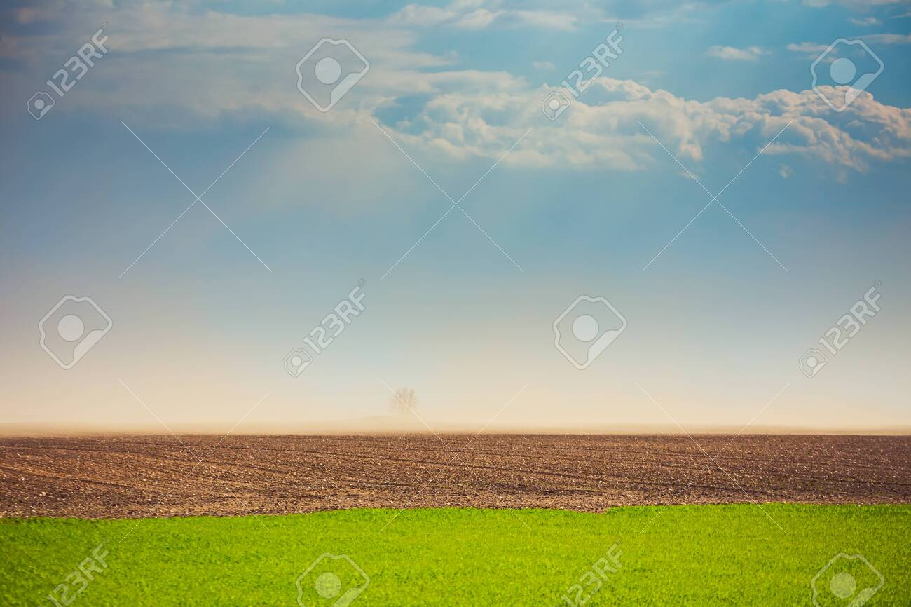 Dust storm in dry fields with strong wind, dry weather infuenced by climate change, spring weather - 145792935