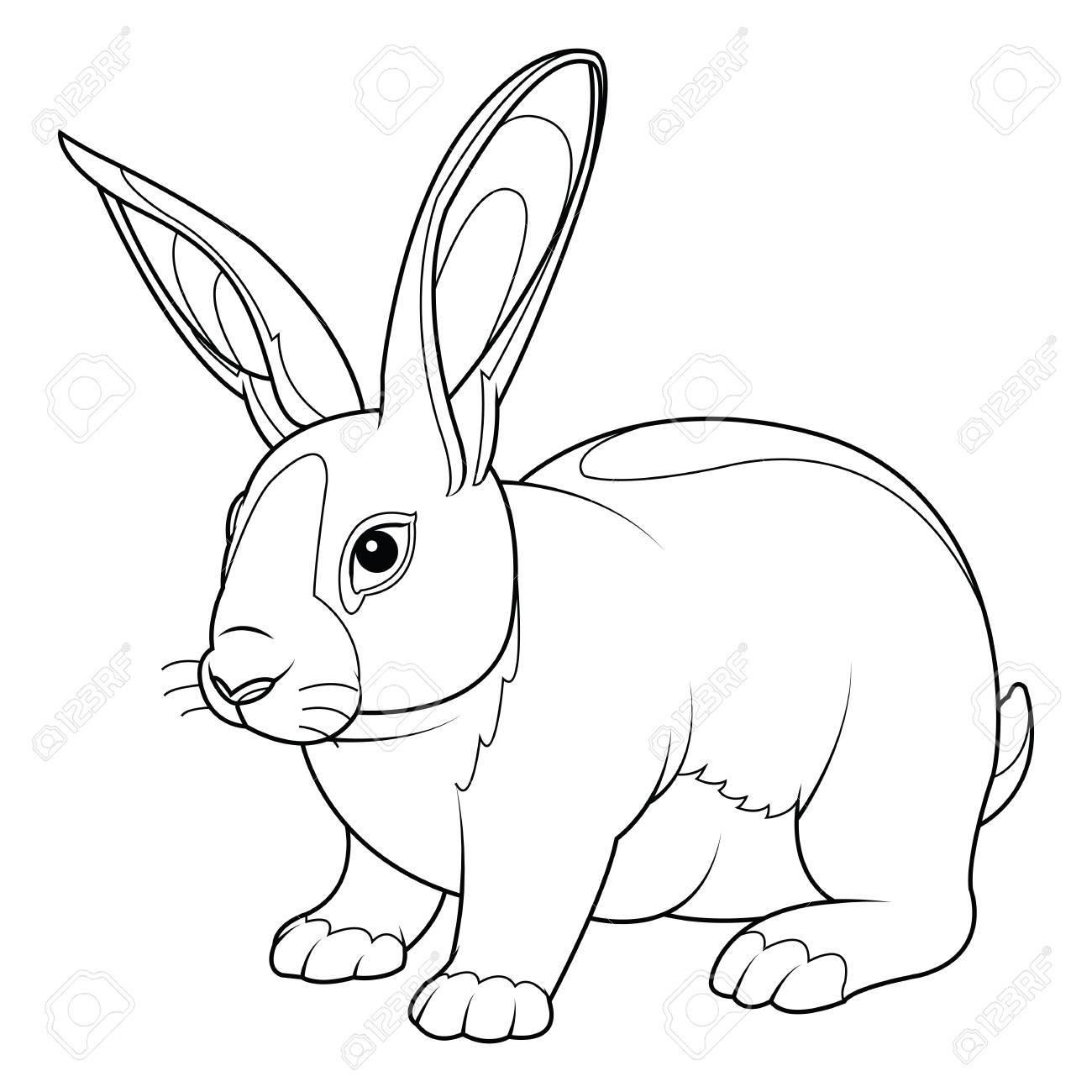 Página Para Colorear Conejo. Mano Dibuja El Ejemplo Del Vector Del ...