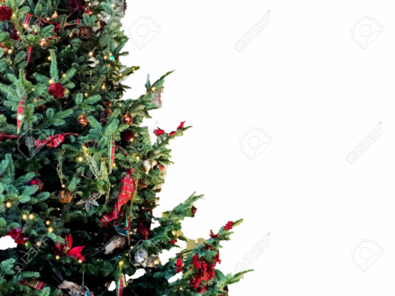Christmas Tree Background With Empty White Space. Stock Photo ...