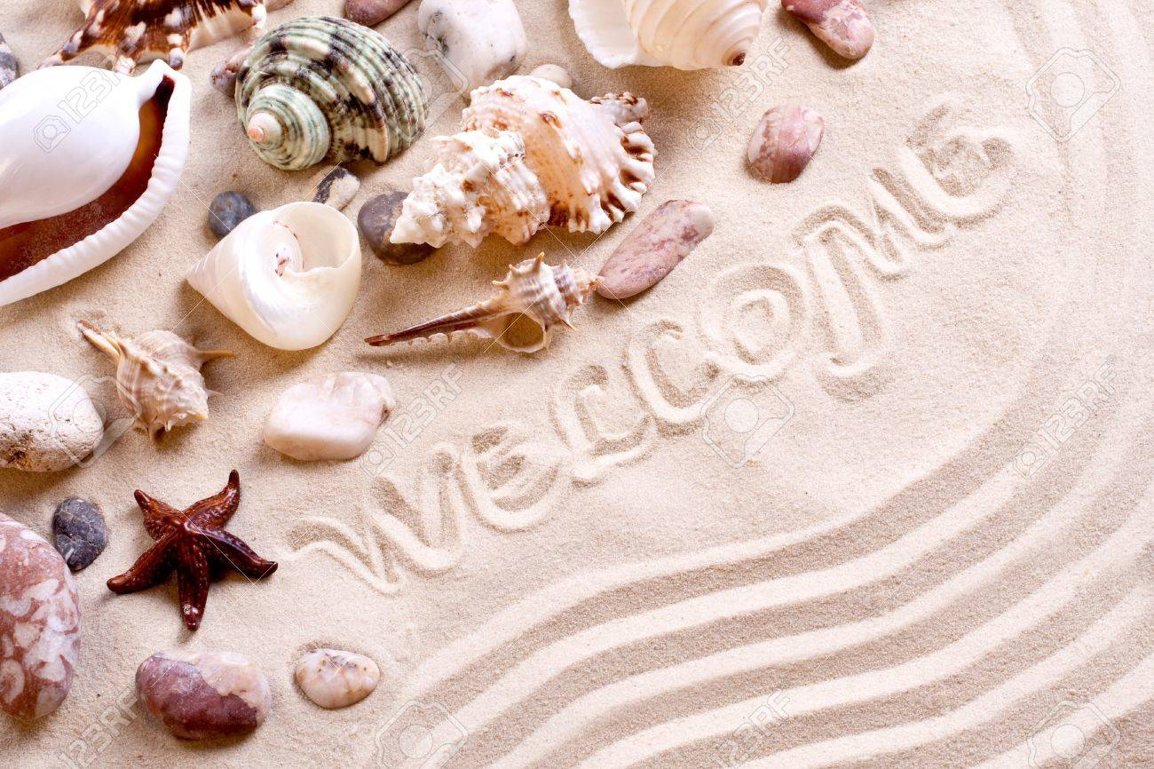 seashells in sand with text as a background - 7669878