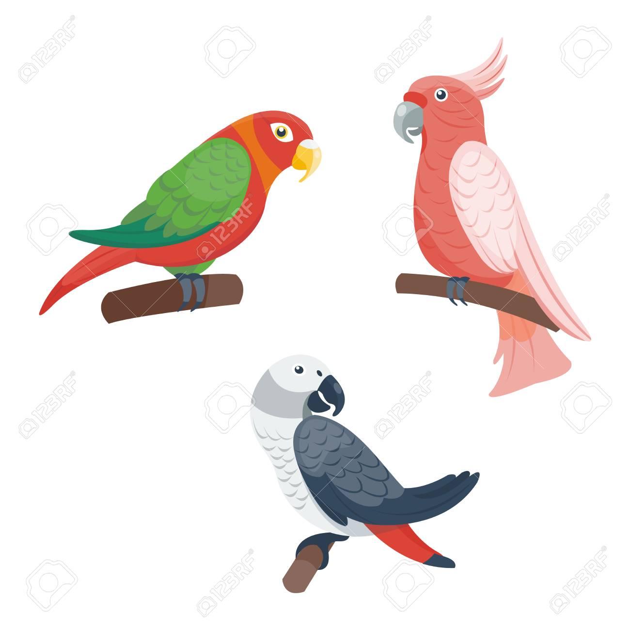 Loros Y Papagayos De Dibujos Animados Conjunto Pájaros Animal