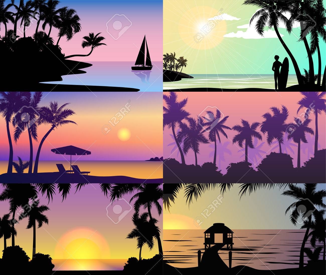 summer night time sunset vacation nature tropical palm trees
