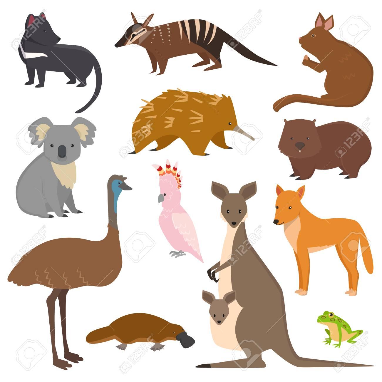 Australian wild animals vector set - 96756172