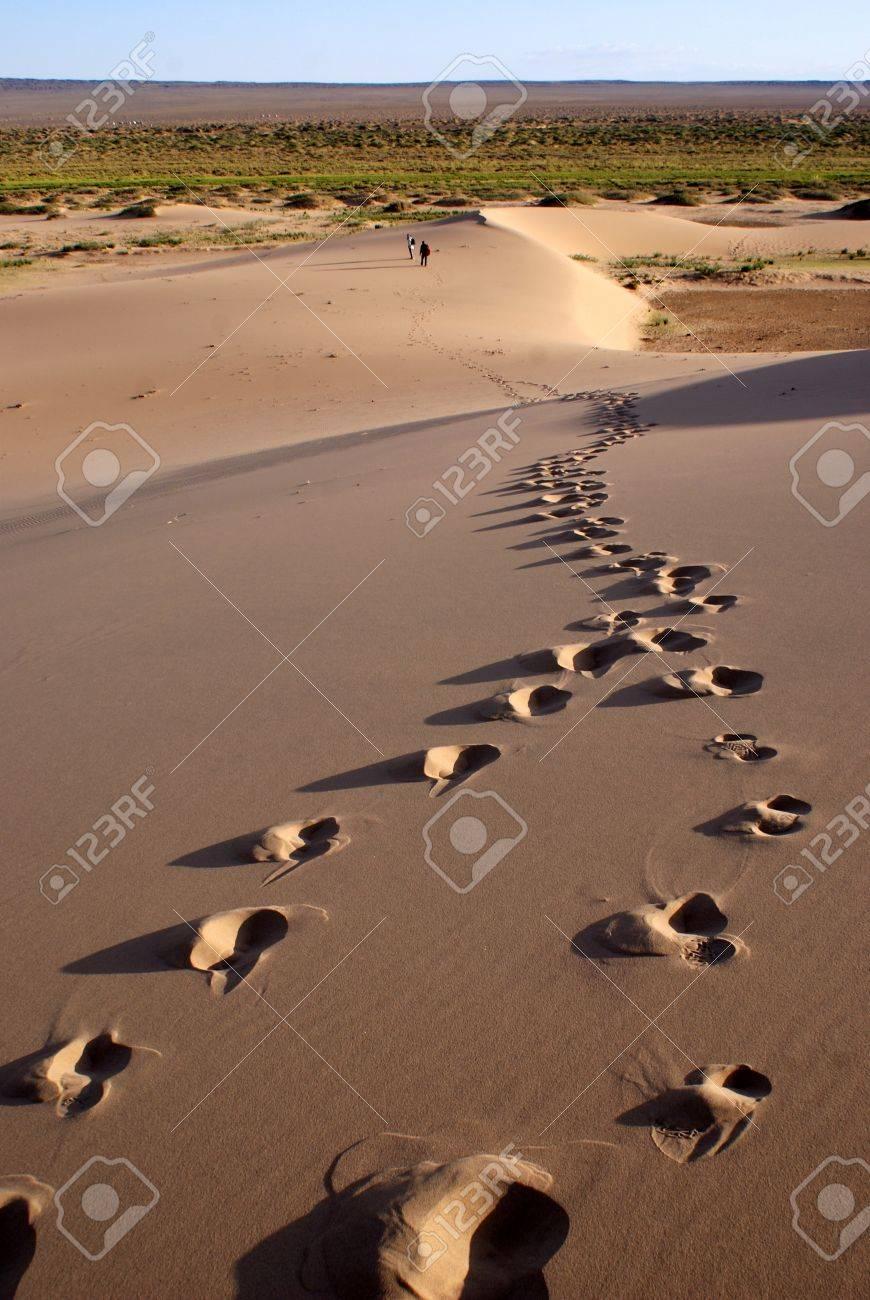 砂漠 ゴビ ゴビ砂漠を満喫する観光スポット5選