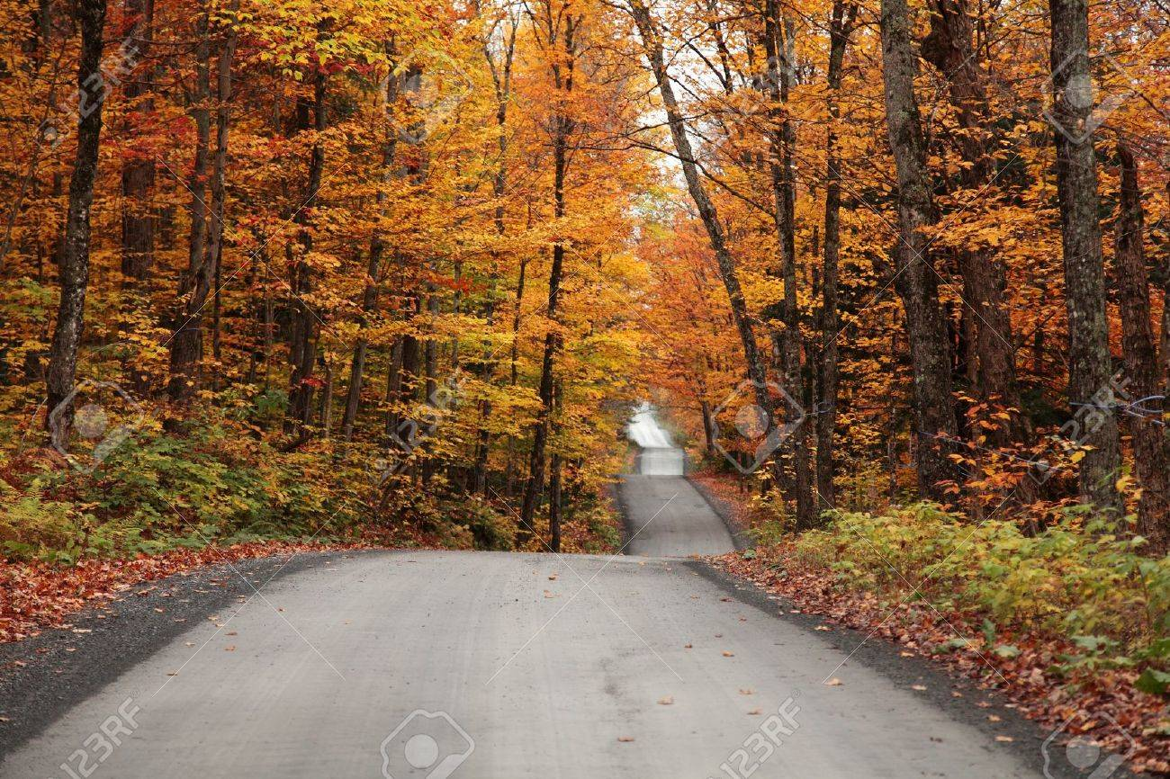 Autumn colors in the countryside located in Quebec, Canada Stock Photo - 15446975