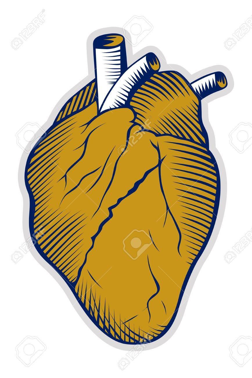 human heart icon - 9613151