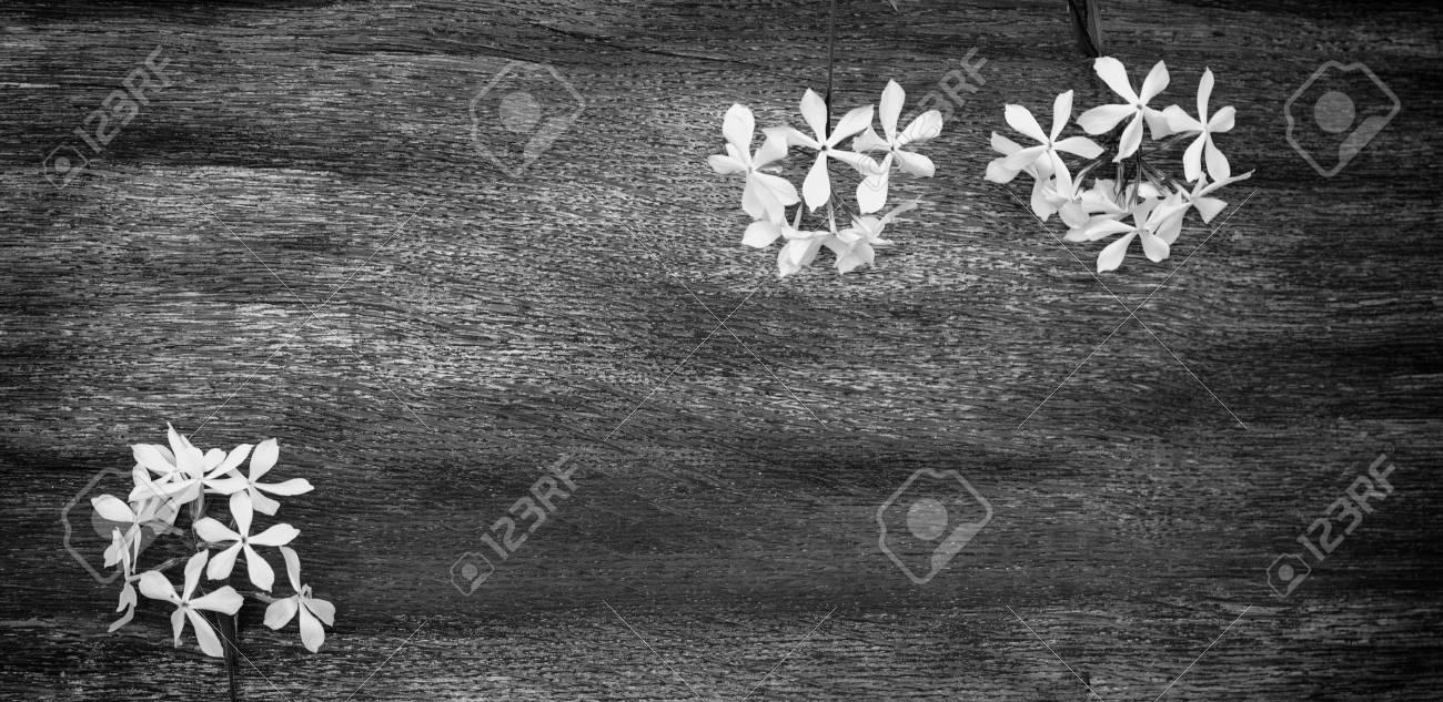 Vintage Holzerne Hintergrund Und Schonen Blumen Schwarz Weiss Foto
