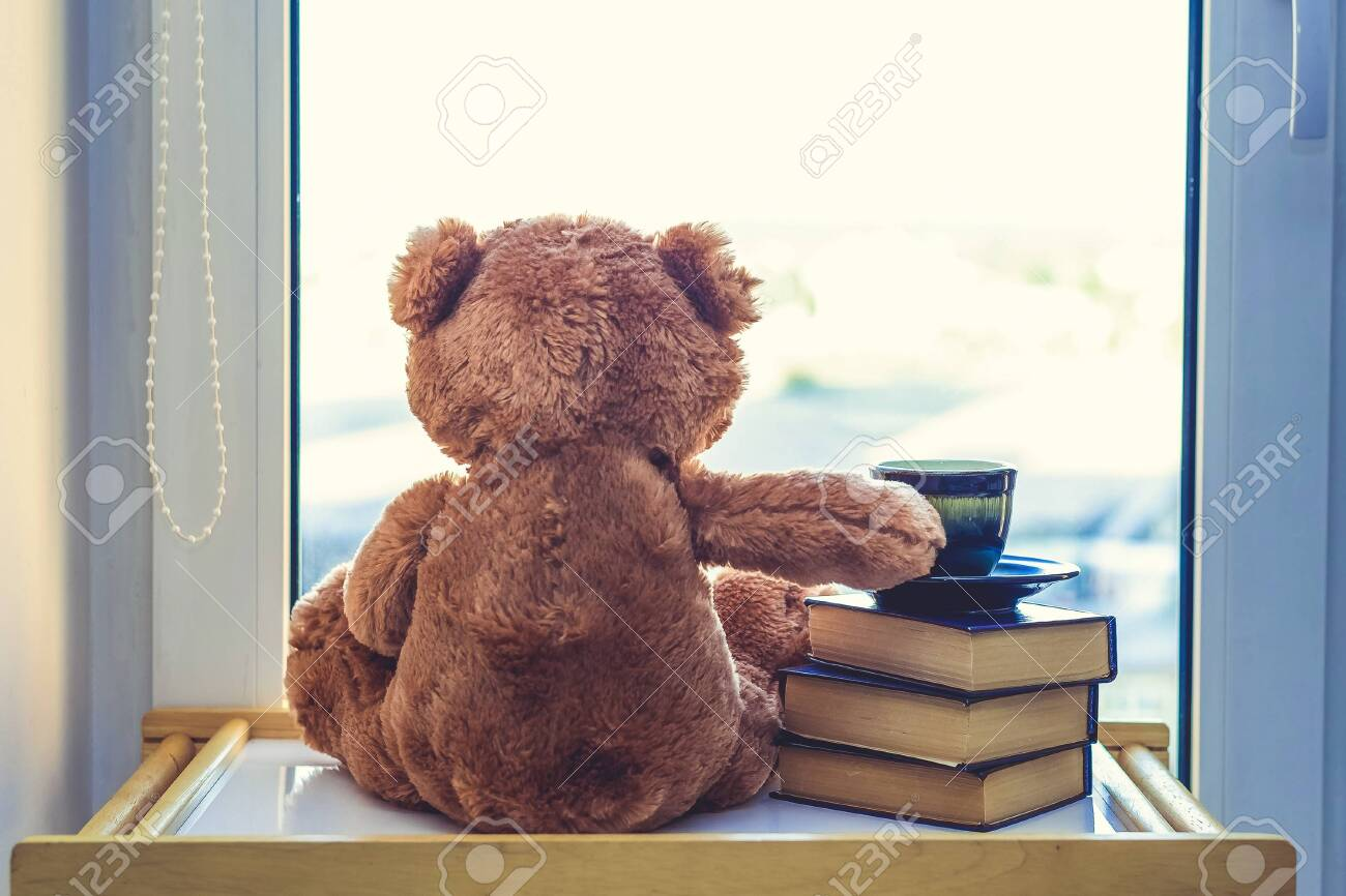 Sweet Teddy bear looking in windiws with cup of coffee or tea on stack of books.. At a morning sun light. Good morning concept. Romantic gift. back view. - 137314847