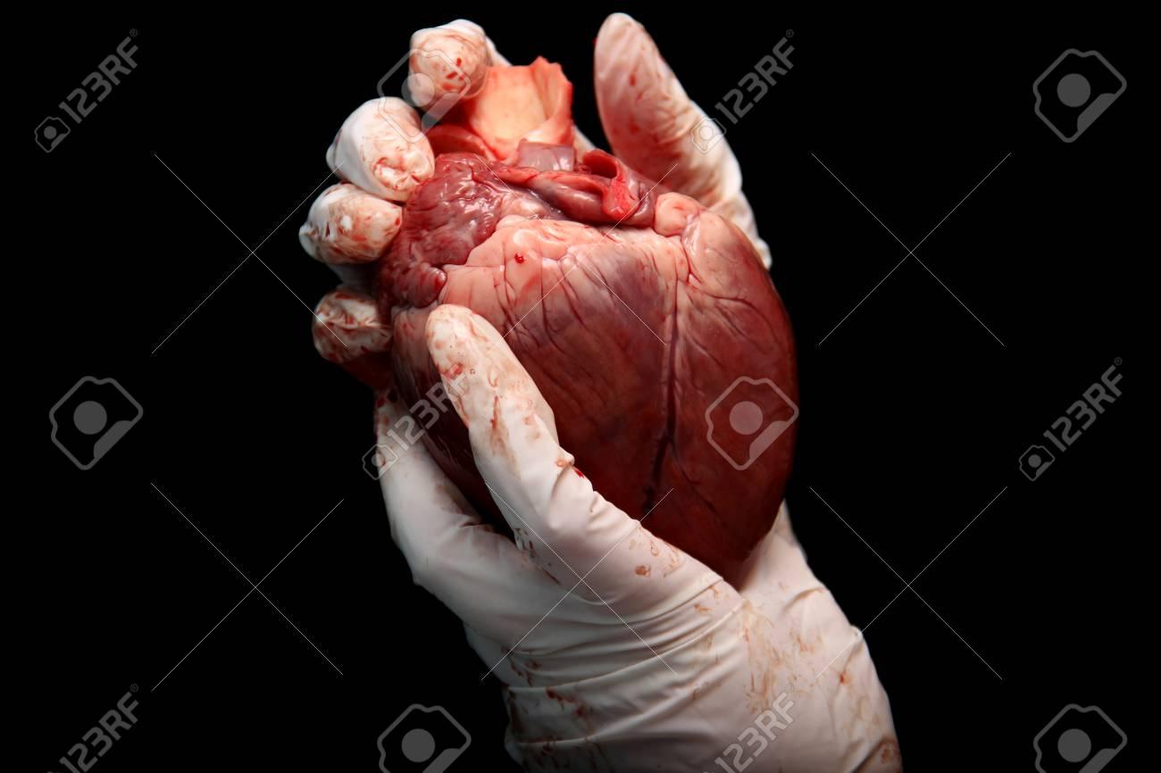 Coeur Humain Photo greffe d'organes illégale abstraite. un coeur humain dans la main d