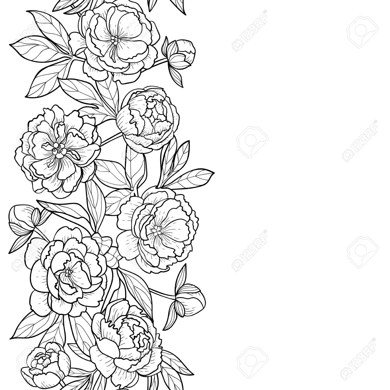 Peony Flowers And Leaves Seamless Vertical Border Floral Romantic