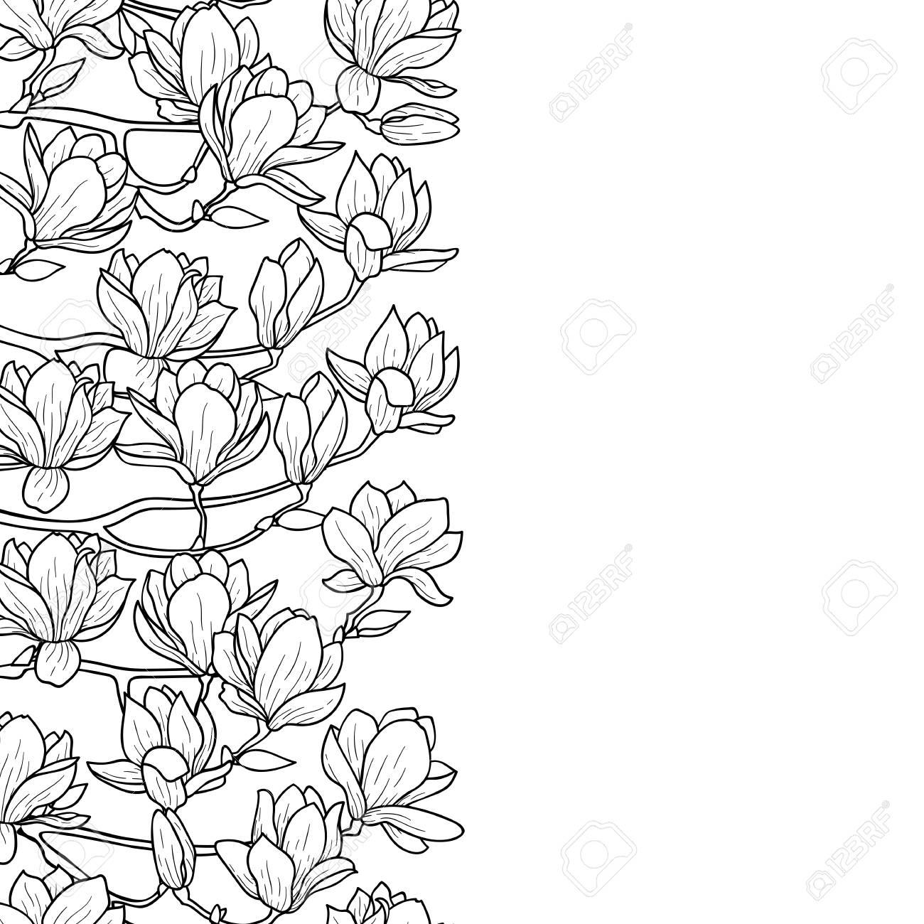 Magnolia Outline Seamless Border. Floral Romantic Wallpaper For ...