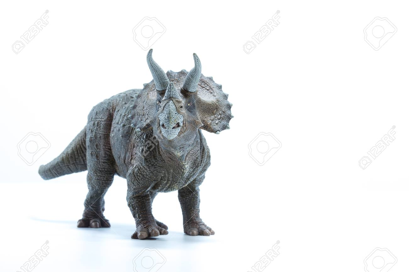 triceratops dinosaurs toy isolated on white background front
