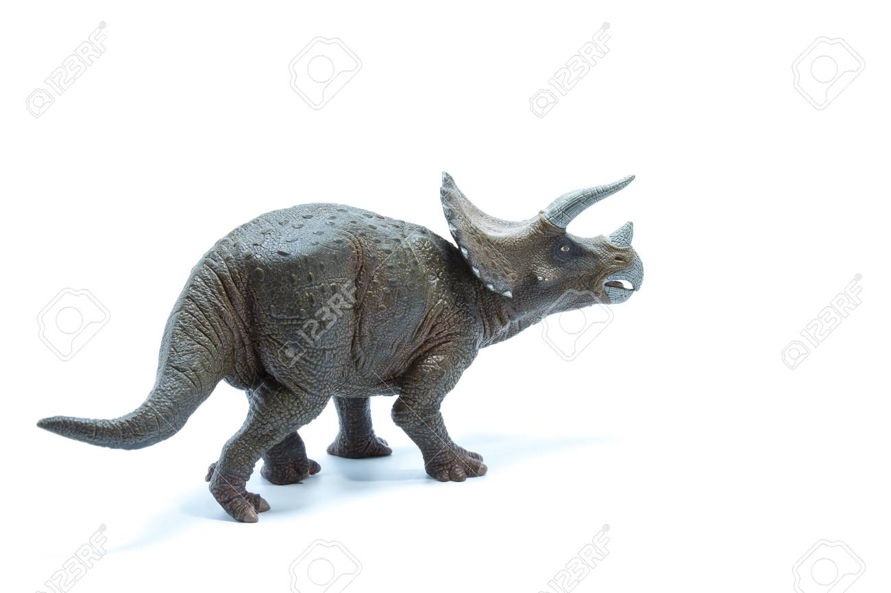 triceratops dinosaurs toy isolated on white background back