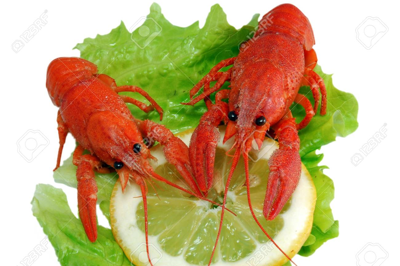 Boiled crayfishs on lettuce and lemon Stock Photo - 4927945
