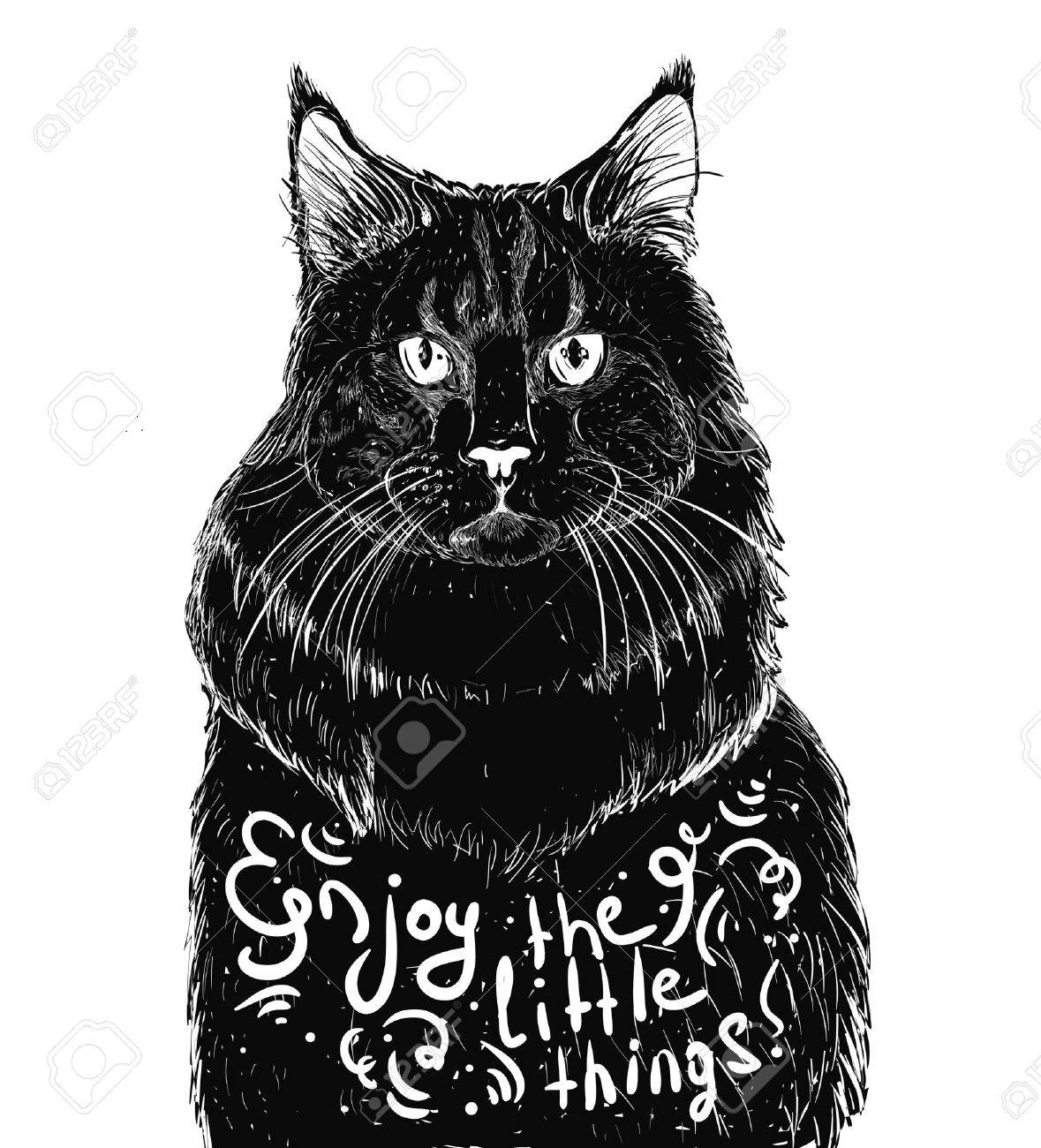 Black cat isolated on a white background Stock Vector - 59798276