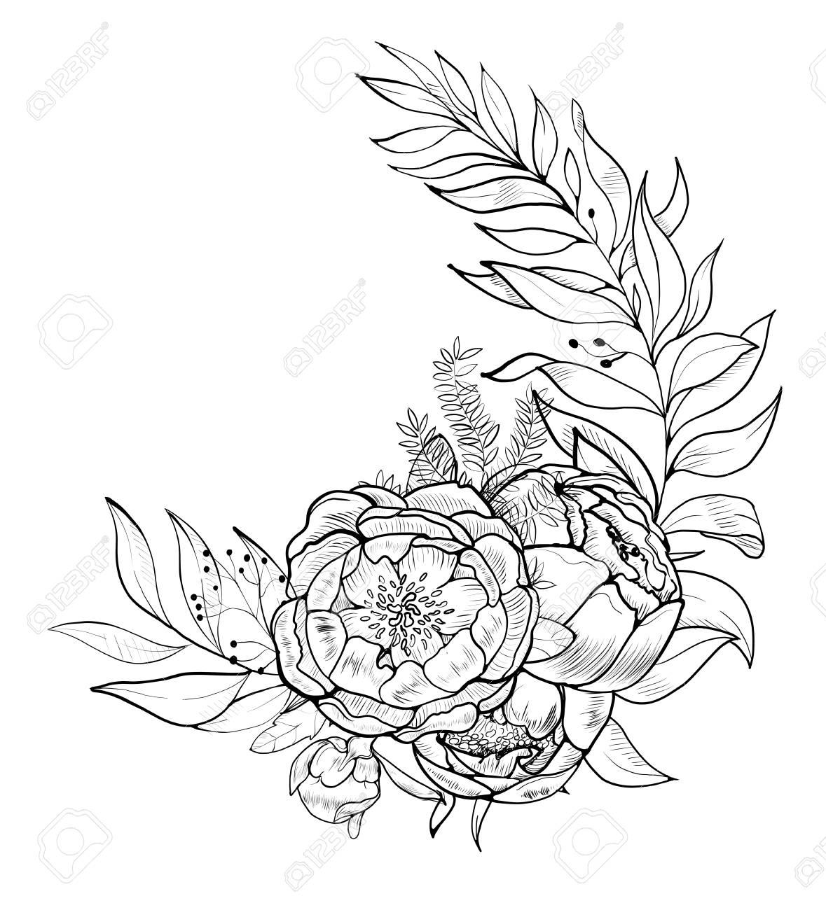 bouquet of peony vector element of design royalty free cliparts rh 123rf com pony vector creator peony victorian tiles