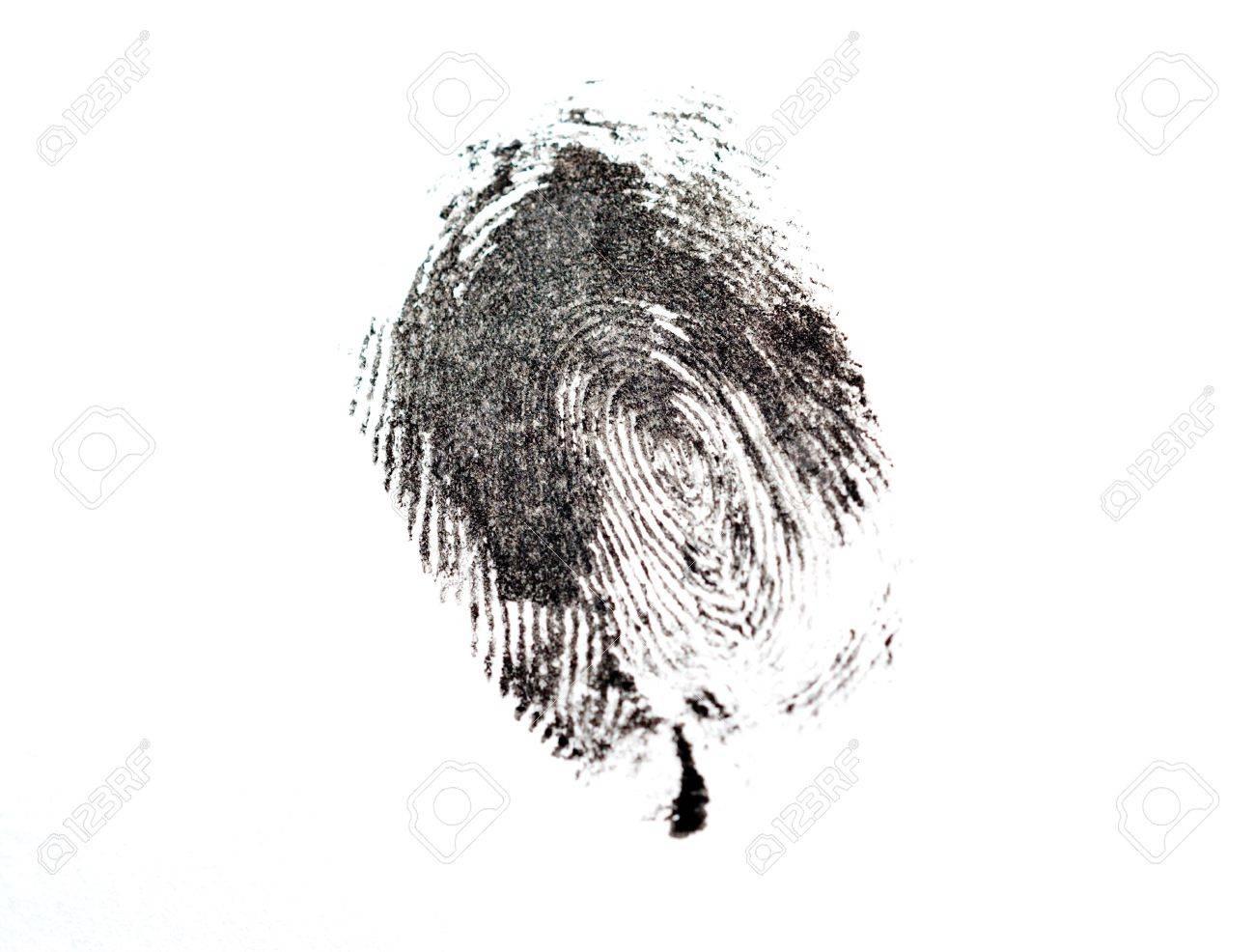 detail of black fingerprint isolated on white - 6019616