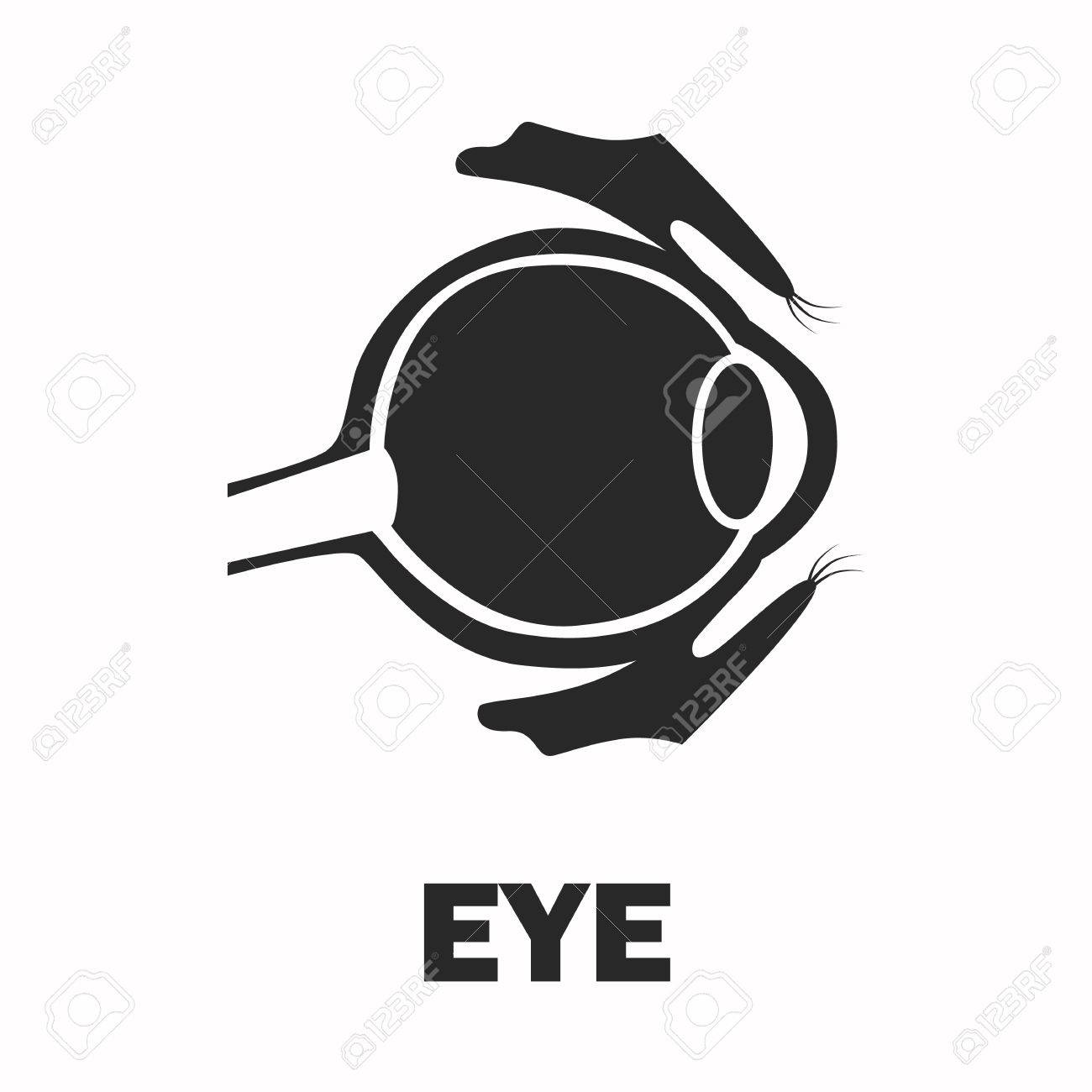 Human eyeball black icon - 61469918