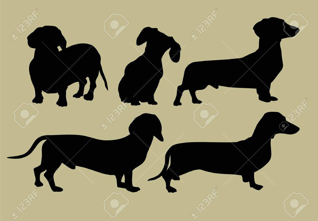 silhouette of dachshund Stock Vector - 16991713