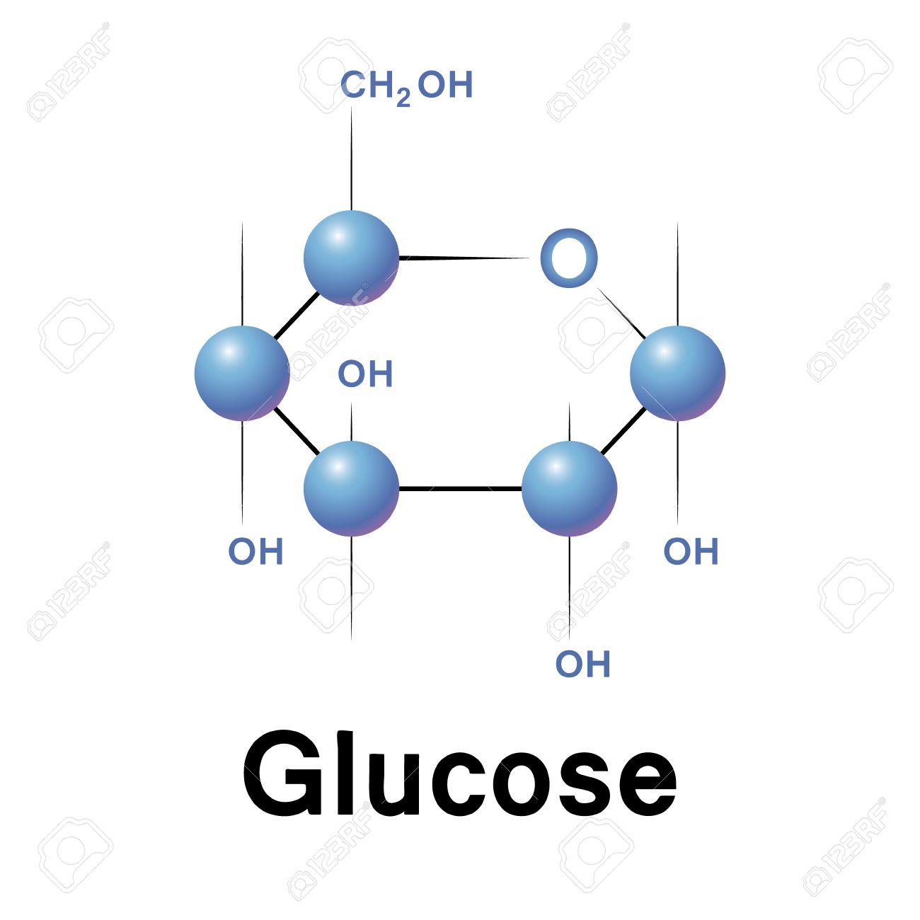 Glucose molecule strucure biochemistry chemistry vector glucose molecule strucure biochemistry chemistry vector illustration stock vector 27871862 biocorpaavc Images