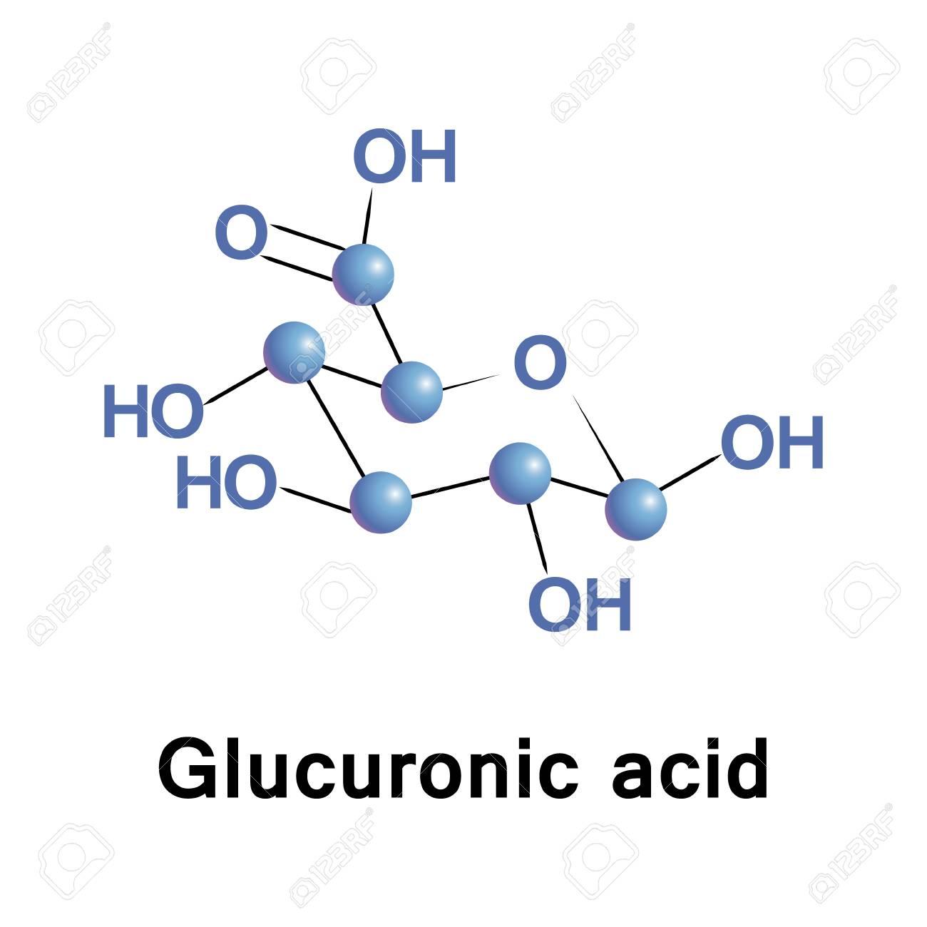 Cido Glucurónico é Um ácido Urónico Que Foi Isolado Pela Primeira Vez A Partir De Urina Pode Ser Encontrada Em Muitos Gomas Tais Como Goma Arábica E