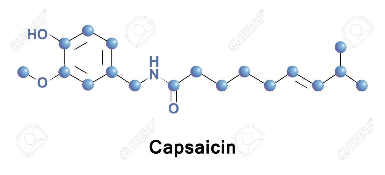 La Capsaicina Es Un Componente Activo De Los Chiles, Que Son ...