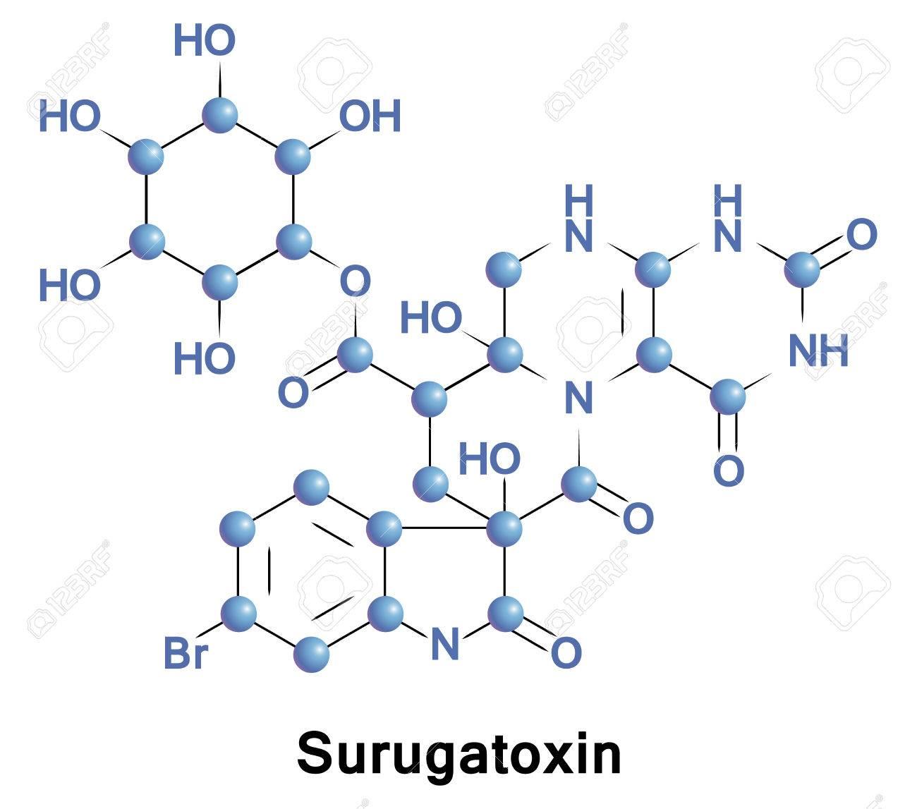 受容 アセチルコリン ニコチン 体 性