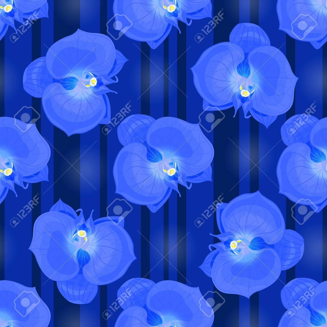 Fondo De Flores De Orquideas Azules Ilustraciones Vectoriales Clip