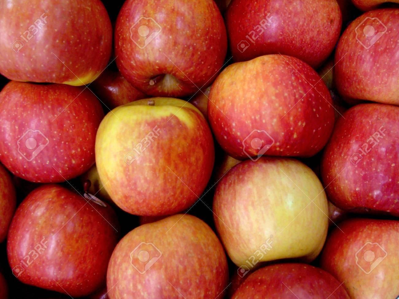 red apple Stock Photo - 3713687