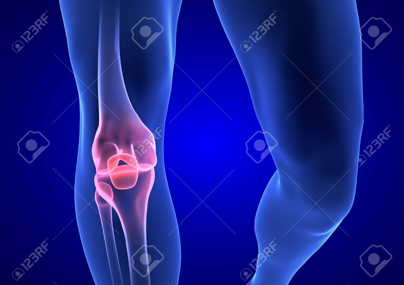 Knee Pain Blue Human Anatomy Body 3d Render On Blue Background