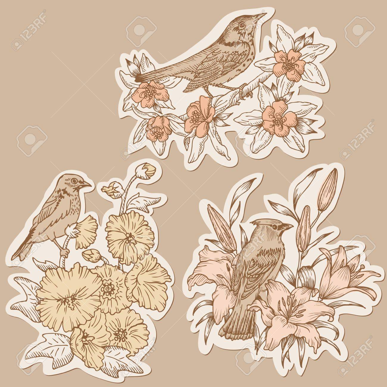 Set of Vintage Birds and Flowers on tags - hand drawn in vector Stock Vector - 12851854