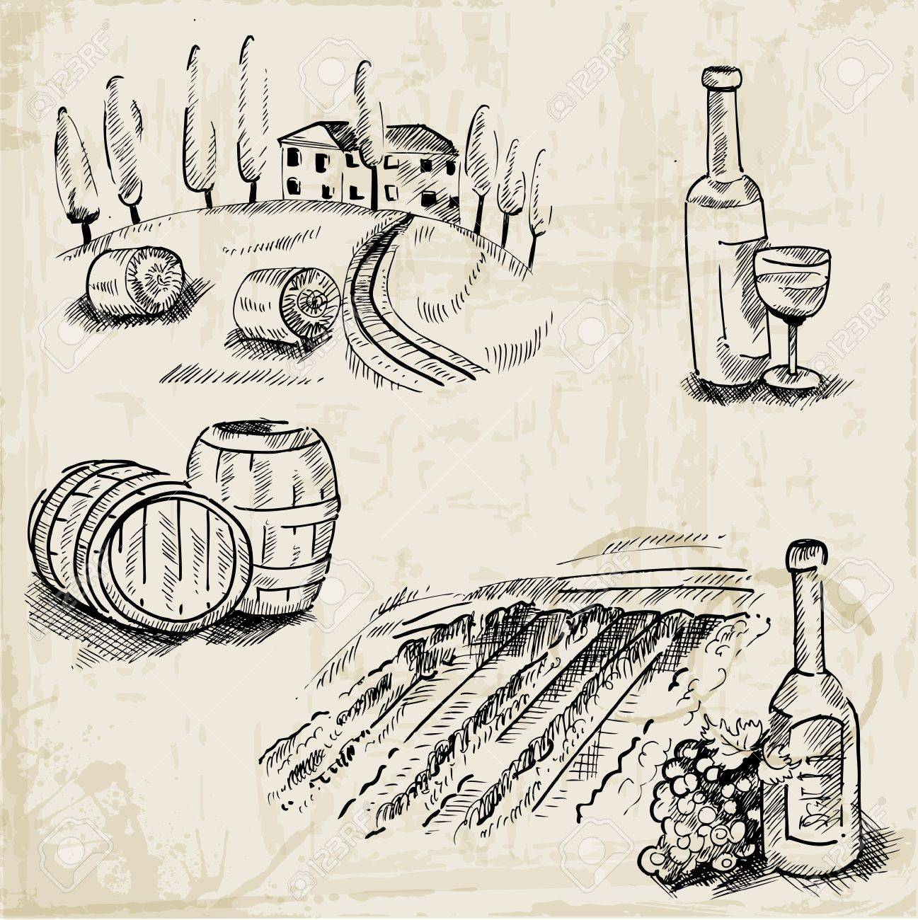 Wine, Winemaking and Vineyard - hand drawn illustration - in vector Stock Vector - 19986146