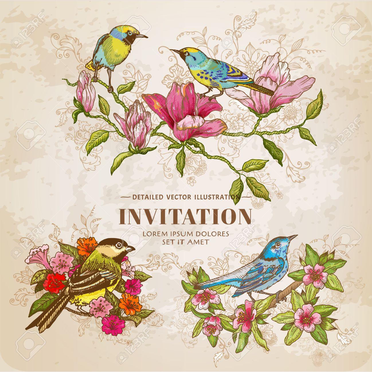 Conjunto De Vintage Flores Y Pajaros Ilustracion Dibujado A Mano