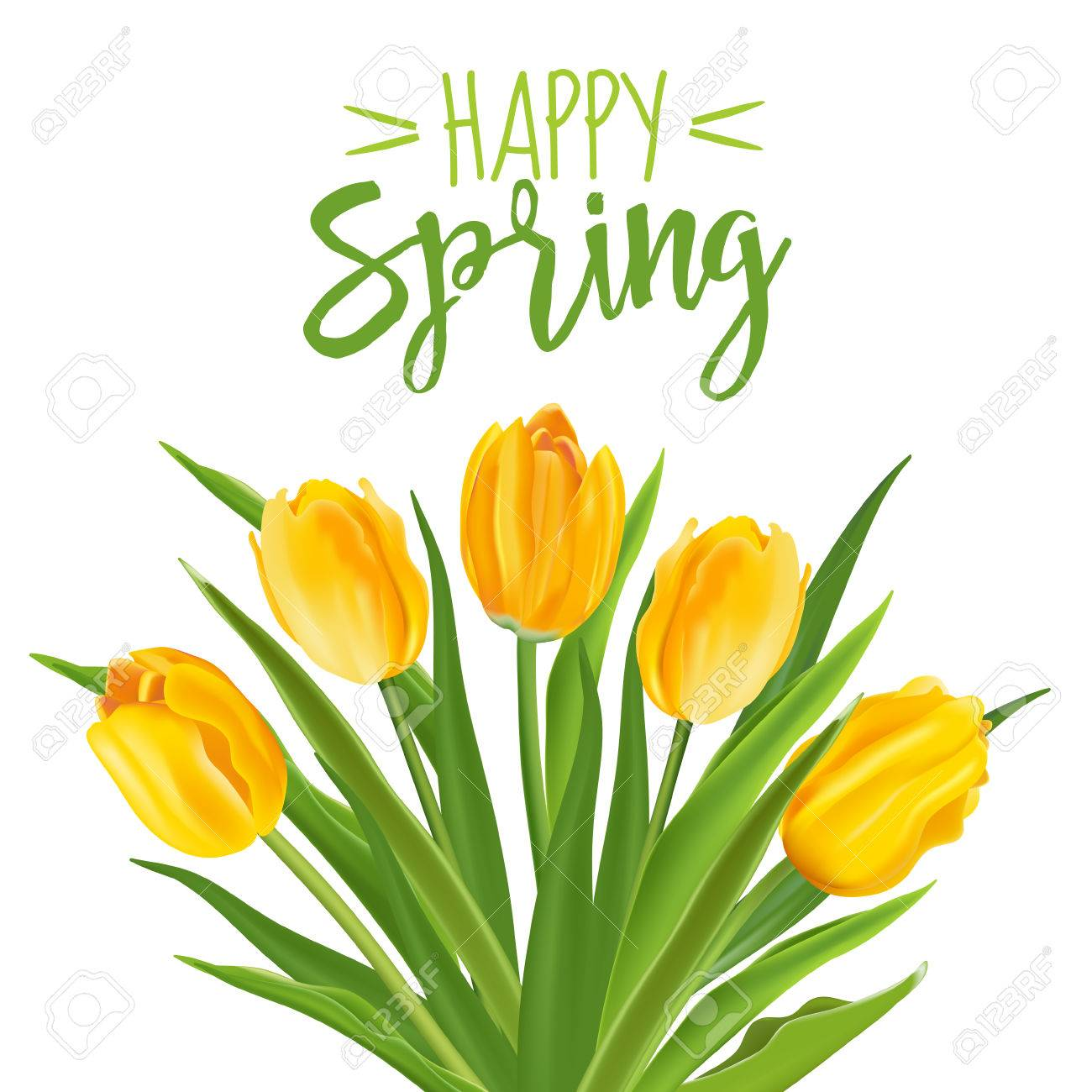 spring flower background with tulips in vector royalty free rh 123rf com vector spring letterhead vector spring interp