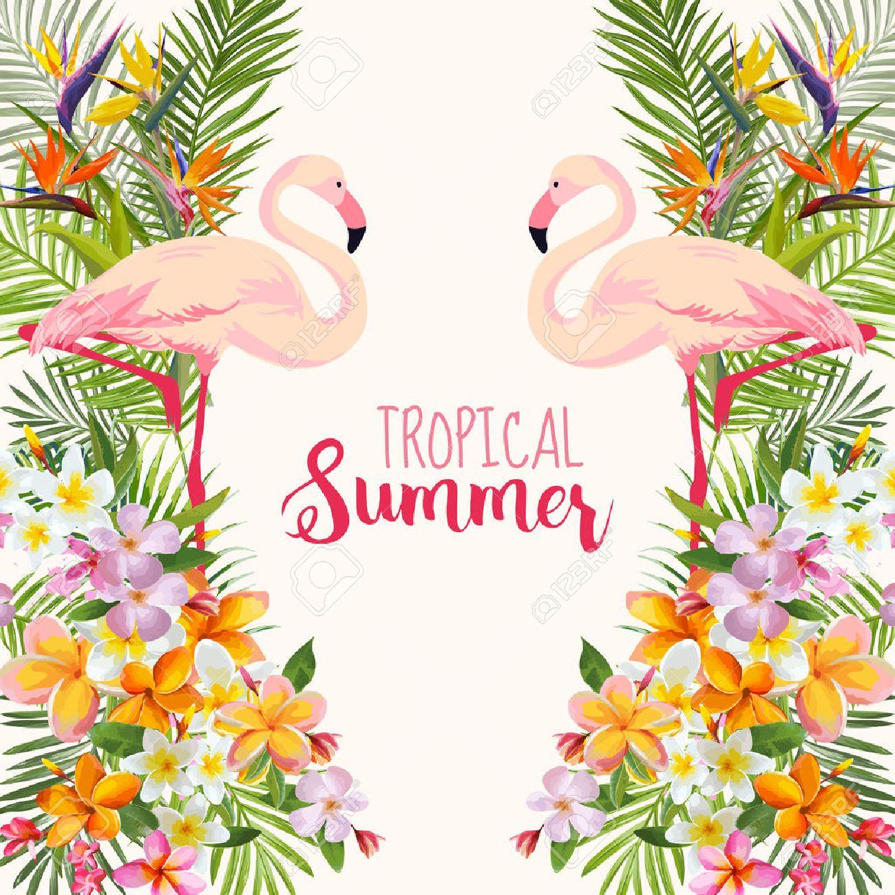 Tropical Flowers. Flamingo Bird. Tropical Background. Tropical Vector. Floral Background. Summer Background. T-shirt Design. - 57550684