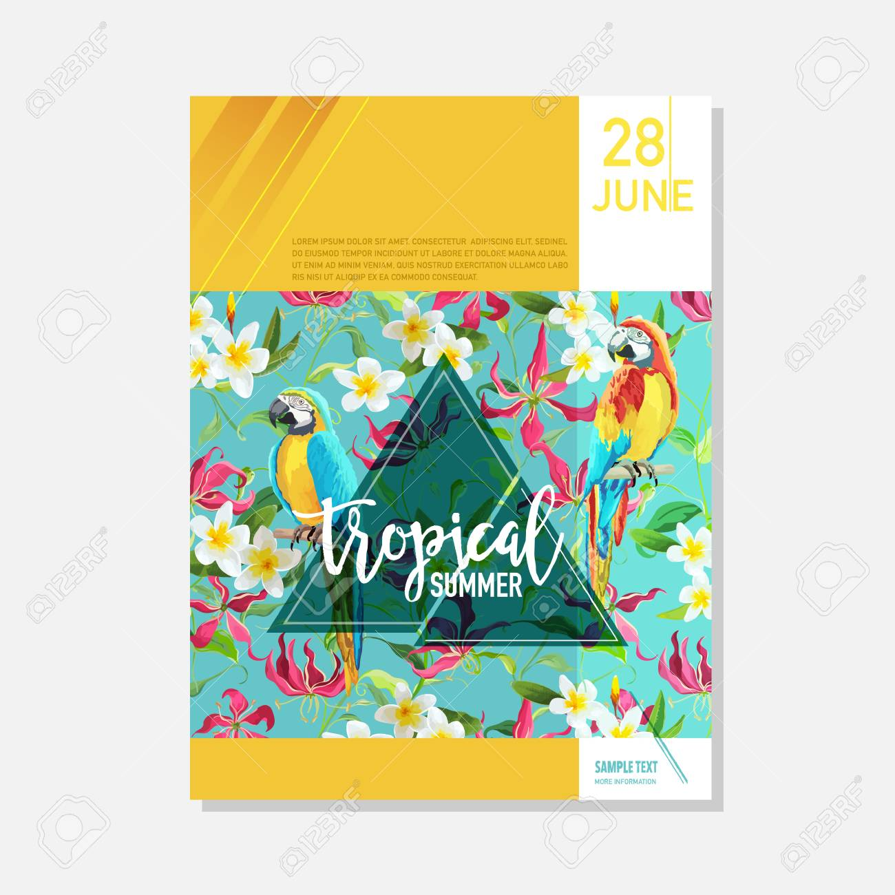 brochure template tropical flowers and parrots summer graphic