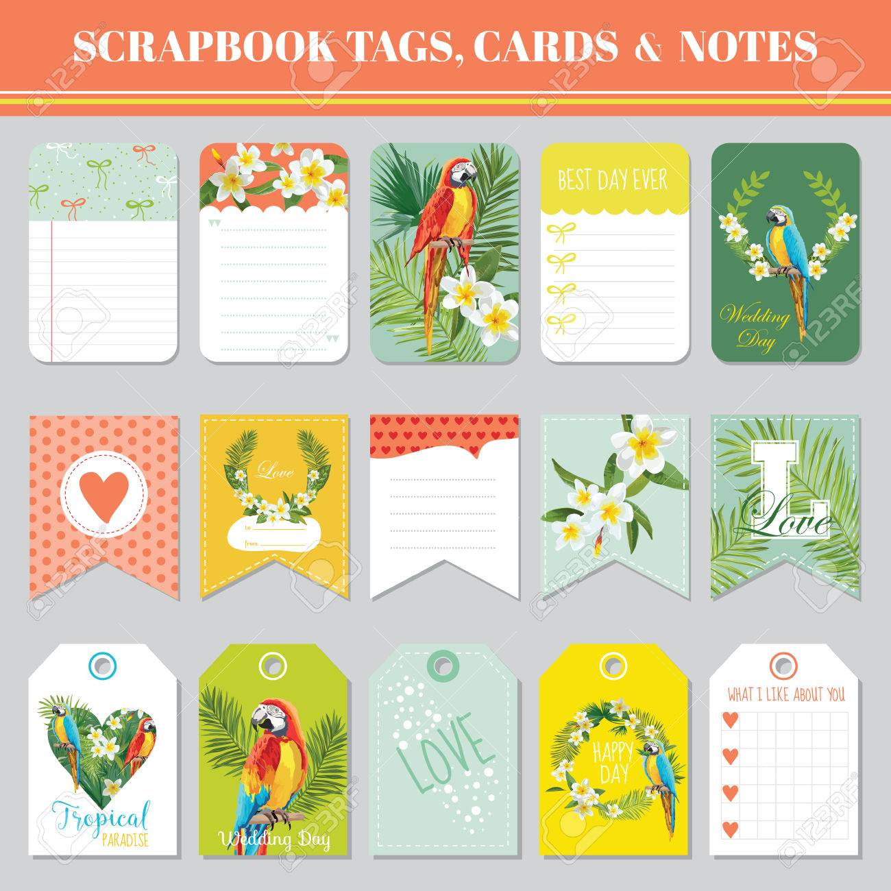Tropical Flowers And Parrots Theme For Scrapbook Tags, Cards ...